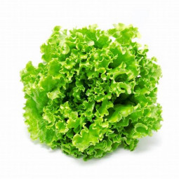 Vodka HOP AROC - 70cl