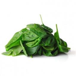 Gin BANDAREL AGED - 50cl