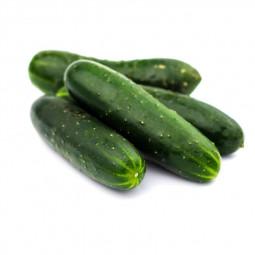 Gin Dry BANDAREL - 70cl