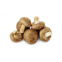 Whisky Pur Malt BESTIUT tourbé - 50cl