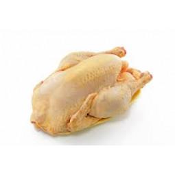 Chocolat - Plaques à casser - Noisette entière - Nature et Progrès - vrac