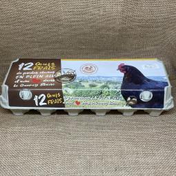 Chocolat - Plaques à casser - Amandes entières - Nature et Progrès - vrac